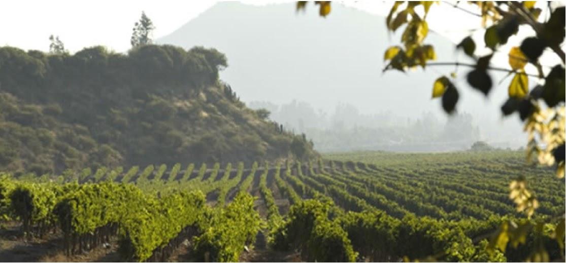 Regiony i wina z południa Hiszpanii