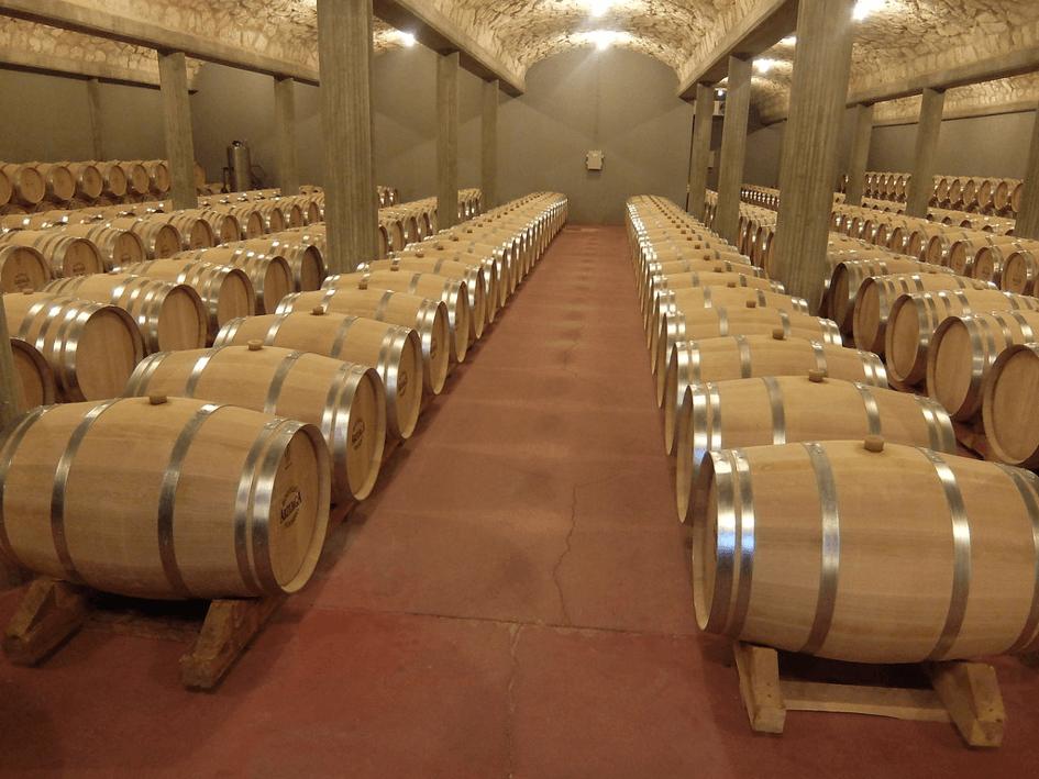 Wino dla konesera – Pago Florentino