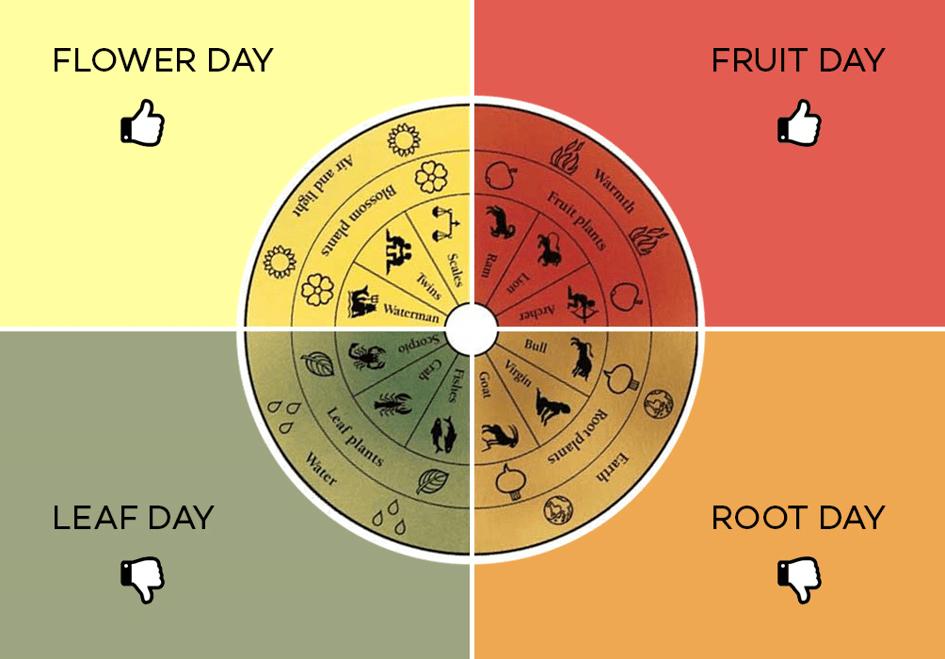 Degustacja wina kalendarz biodeynamiczny