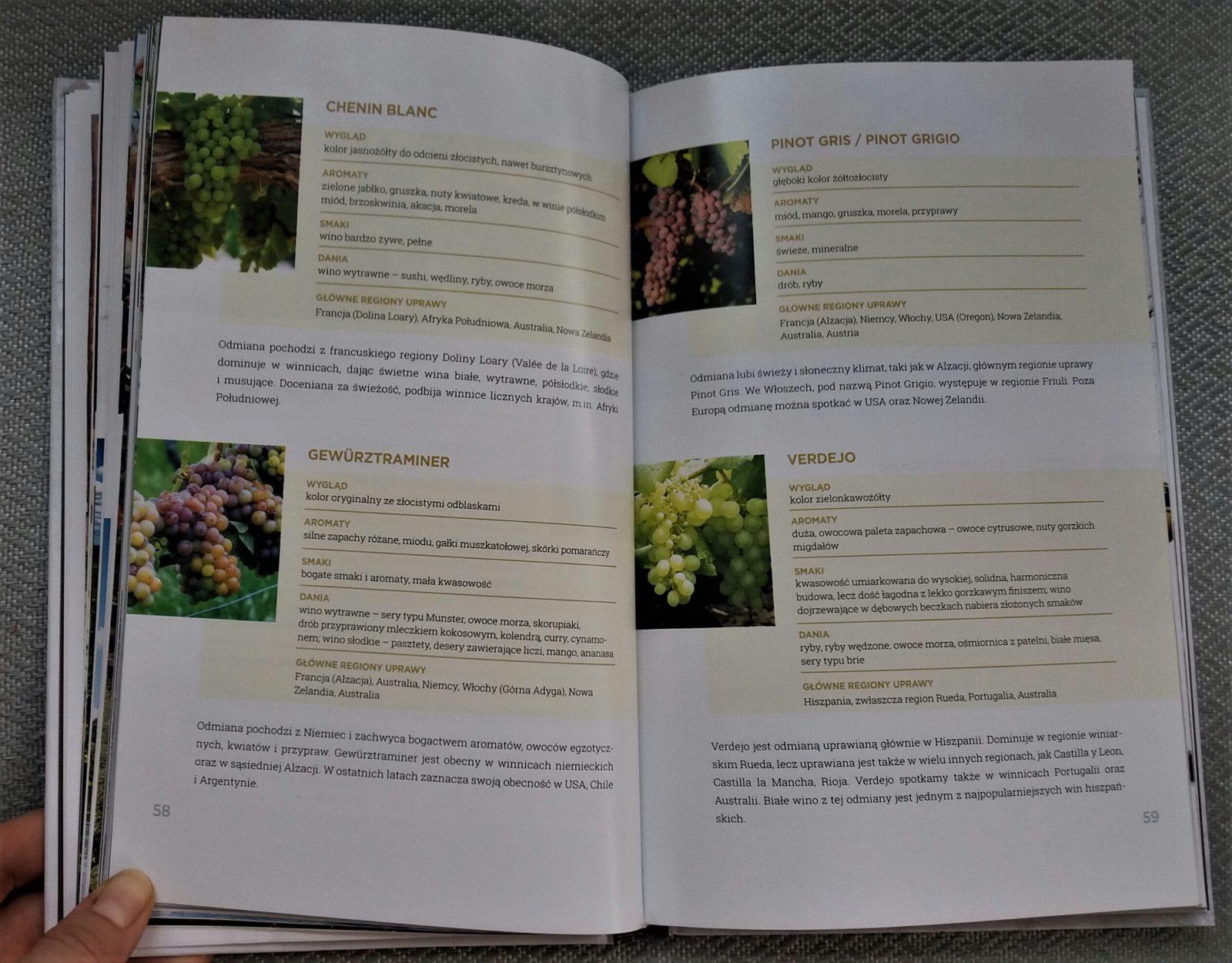 Książka Pinot Gris
