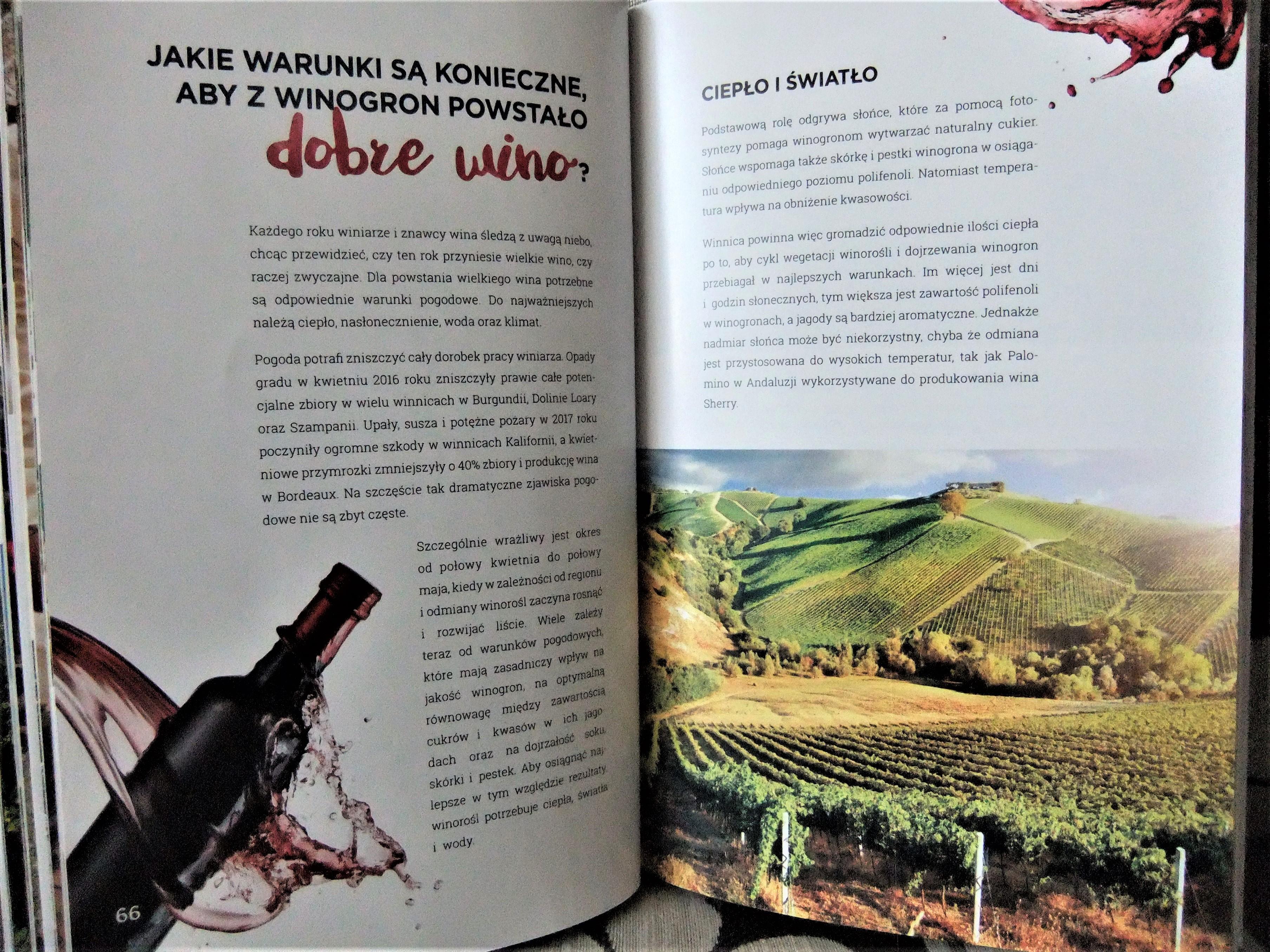 Książka warunki dla dobrego wina