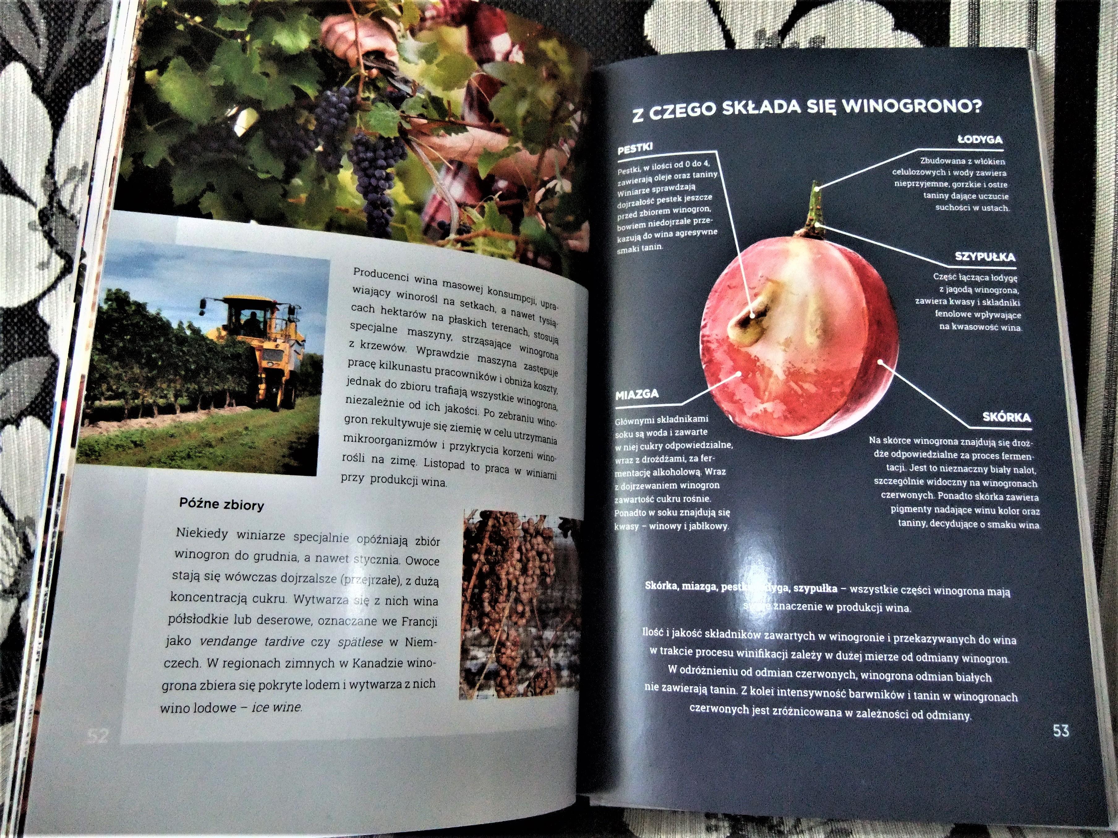 Książka z czego składa sie winogrono