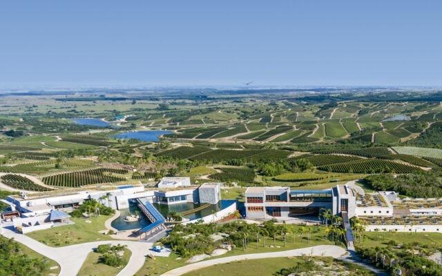 Najlepsze winnice 2020 - 2. Bodega Garzon, Urugwaj.