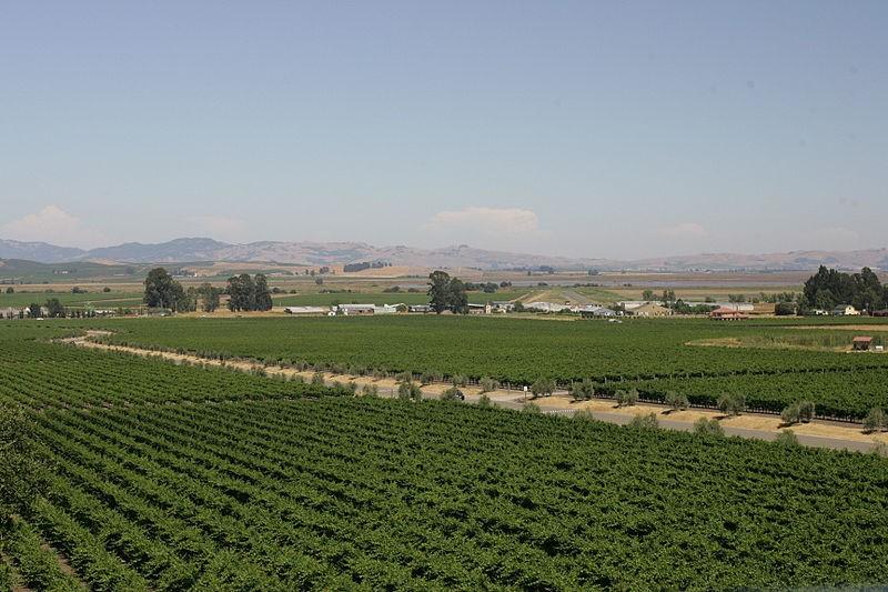 American Viticultural Area