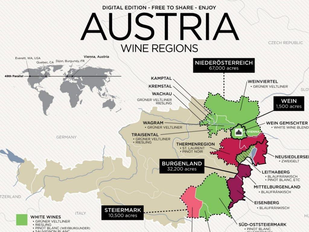 Grüner Veltliner - regiony winiarskie Austrii.