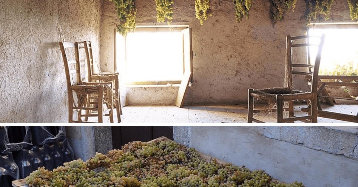 Dziwne kolory wina – słomiane i pomarańczowe wino