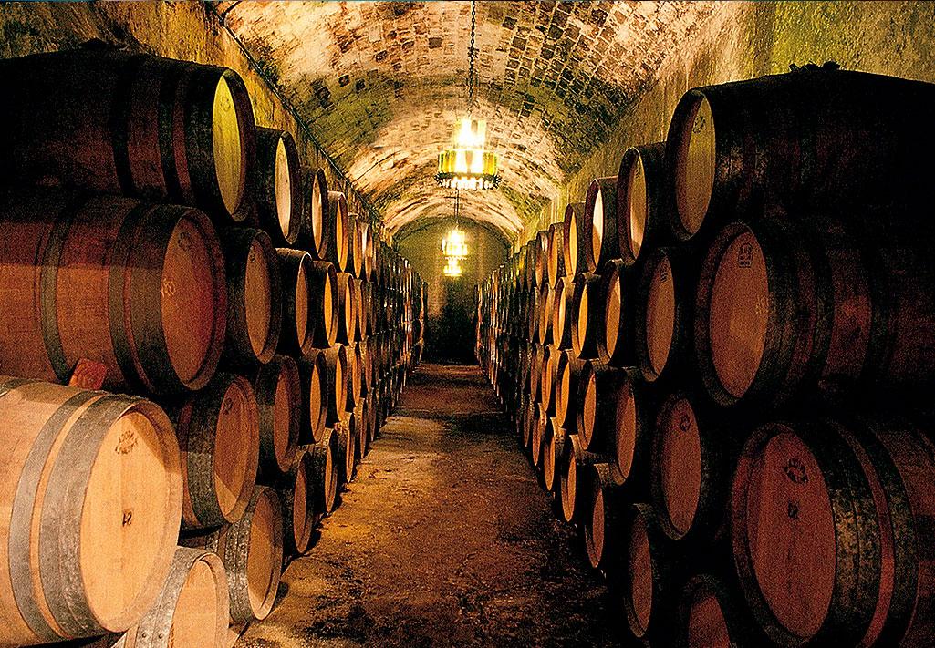 Jak wybrać wino dojerzewające?