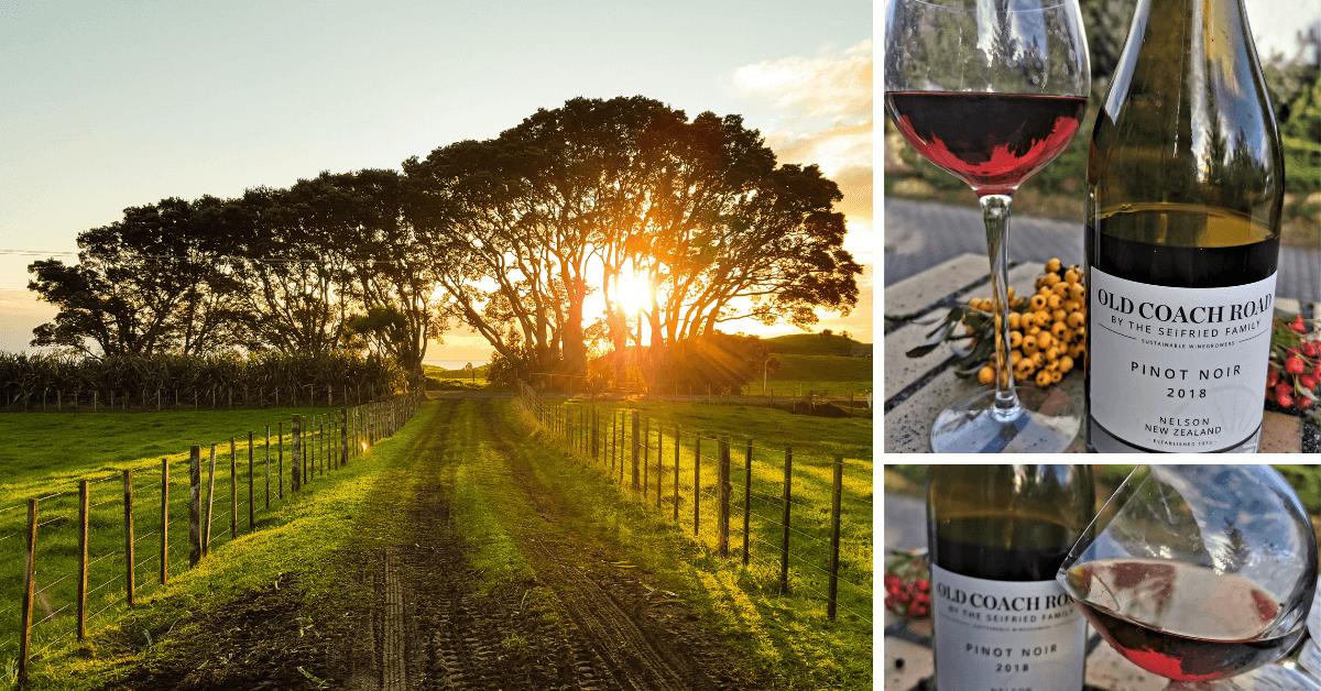 Pinot Noir z regionu Nelson – Nowa Zelandia