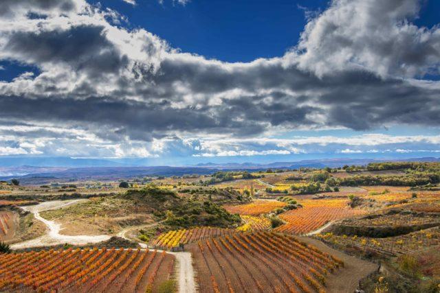 Winiarnia w Rioja.