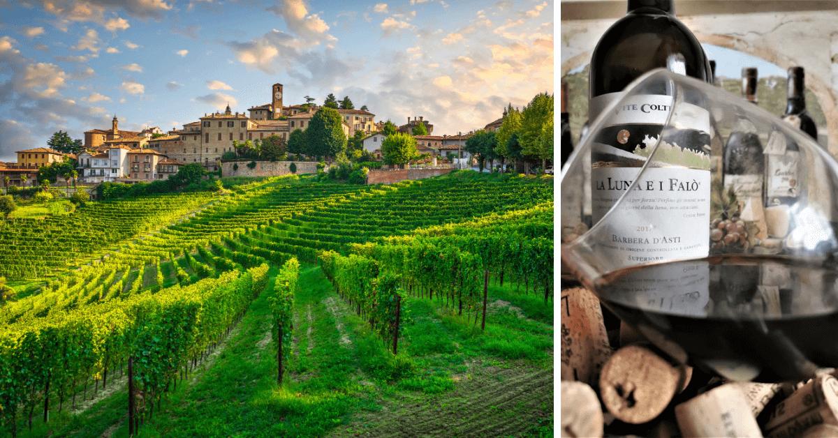 Wino poety – Barbera d'Asti z Piemontu, Włochy
