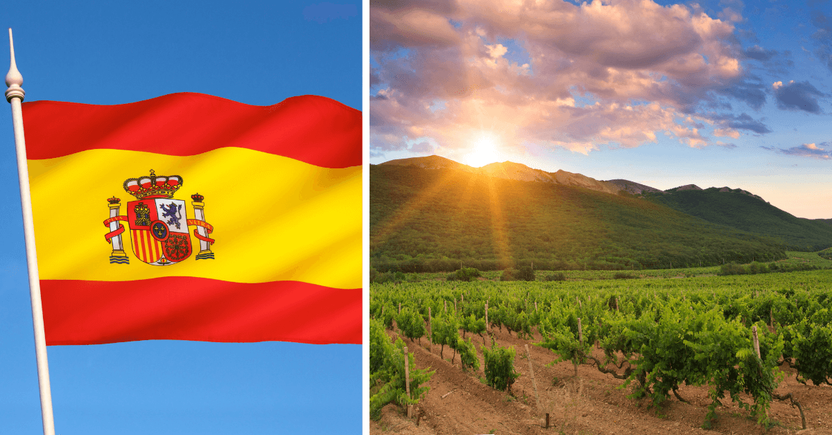 Mi Lugar – wyjątkowe wino Bodegas Queirón z Rioja