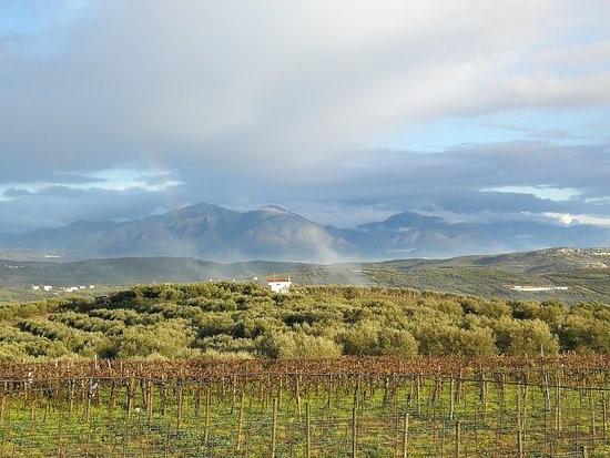 winna turystyka Kreta