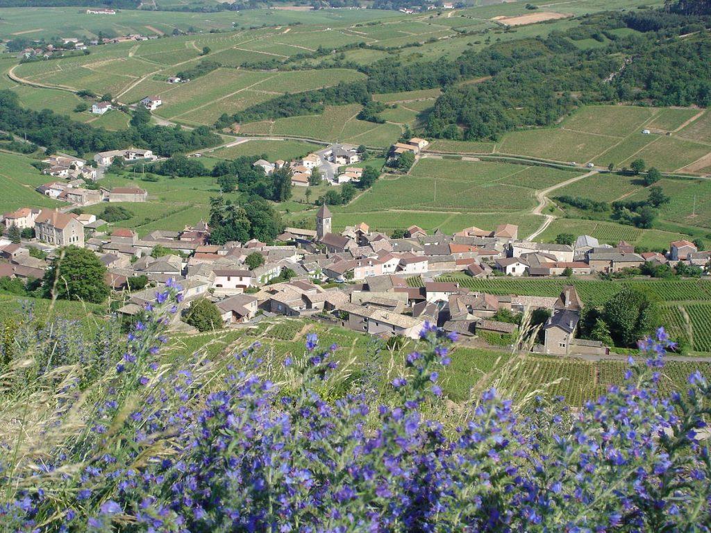 Nowe Premier Cru z Burgundii tutaj powstaje.