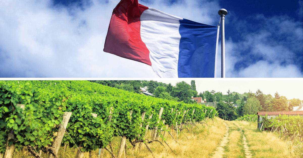 Nowe Premier Cru z Burgundii